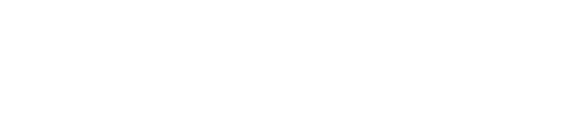 Madsoft logo